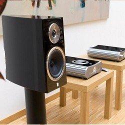 gato-audio-FM-2-b