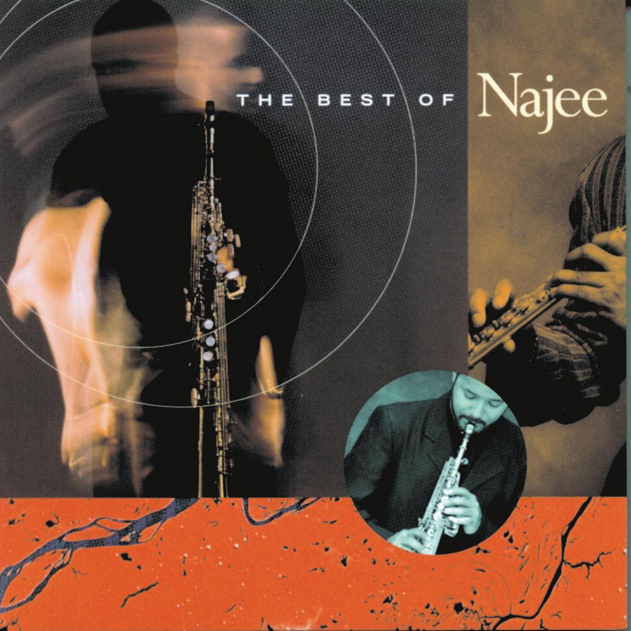 Najee the best of najee